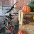 Så blev der også halloween i Thorup-klim hallen.